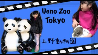 Tokyo with kids : Visited Ueno Zoo Tokyo • Fun place to visit with kids