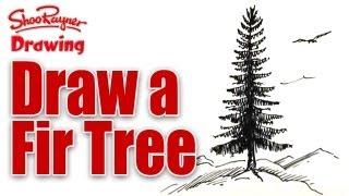 Learn to draw a Fir Tree - spoken tutorial