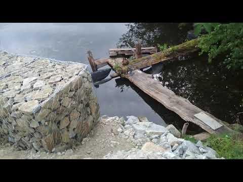 Габионы на берегу дачного пруда