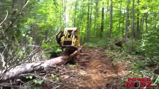 Old Case 450 Crawler Loader takes down a big old Pine tree! PowerModz!