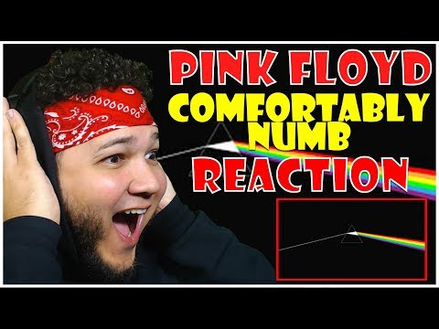 🎤 Hip-Hop Fan Reacts To Pink Floyd - Comfortably Numb 🎸