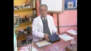 Химия 21. Калий и кальций — Академия занимательных наук