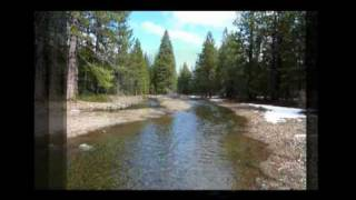 Shasta County Land For Sale - 3.6 Acres In Shingletown, CA