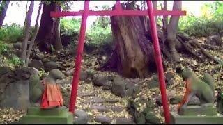 慈眼院(澤蔵司稲荷)(東京・文京)[ Jiganin Temple (Takuzosu Inari) ]