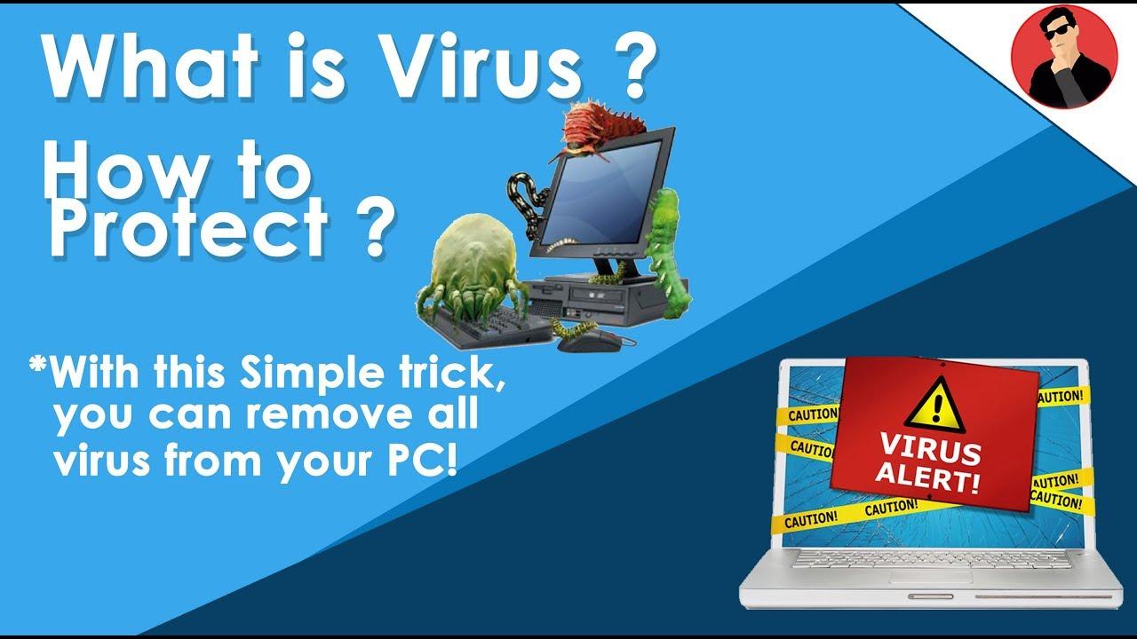 How Viruses Spread