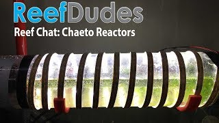 Chaeto Reactors - ReefDudes Saltwater Chat thumbnail