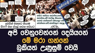 political jokes | parliment | MY TV SRI LANKA
