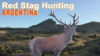 Red Stag Hunting In Argentina - Patagonia 1 /  2018