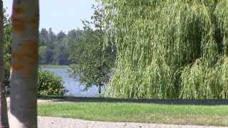 grönsö ett slott vid mälaren 034 4)