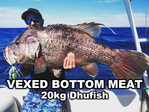 VEXED BOTTOM MEAT SAVES THE DAY   WAIT AND SEE WHAT IT COUGHS UP! 20kg Dhufish