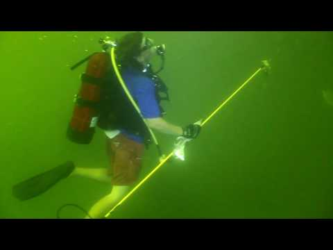 Scuba Diving on the A-Barge and Reef Balls in FH-1 Mississippi