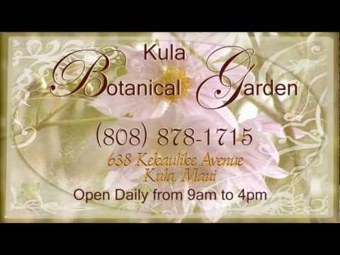 Kula Botanical Gardens - Kula Maui Hawaii