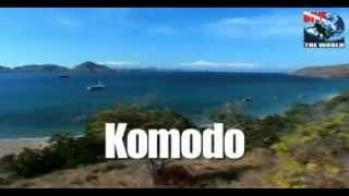Komodo Tauchen Video mit Mantas, Haien und den wunderschönen Riffen des Komodo-Nationalparks