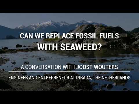 Forget Fracking, Sustain Seaweed - Interview Joost Wouters of Inrada Group by Jurriaan Kamp