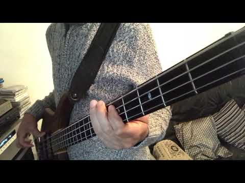 Best of my Love (Bass Guitar Cover)