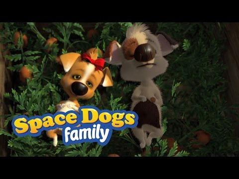 SPACE DOGS FAMILY - Puppy Love