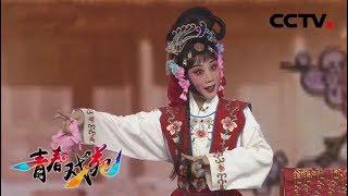 《青春戏苑》 20190528 戏韵芬芳  CCTV戏曲