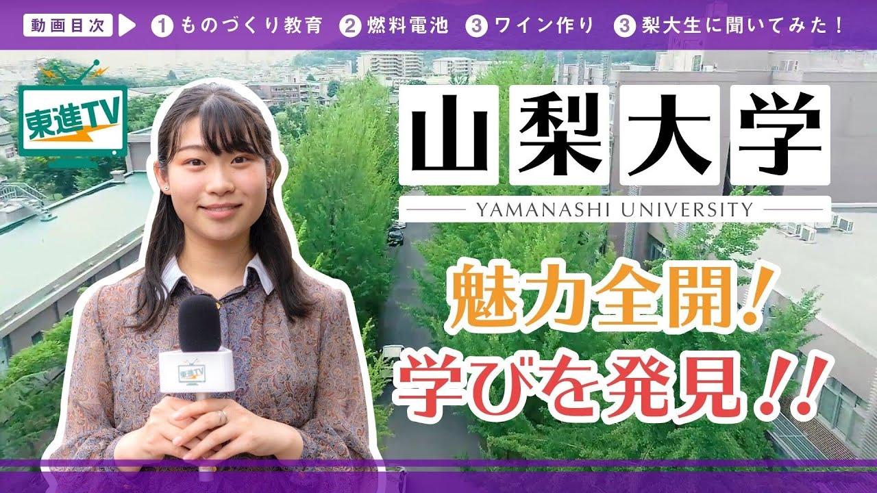 【山梨大学】大学での研究、その学びと魅力をご紹介!!