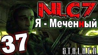 """S.T.A.L.K.E.R. NLC 7: """"Я - Меченный"""" #37. Рыжий лес"""