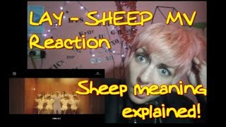 LAY 레이 SHEEP (羊) MV Reaction [SHEEP MEANING EXPLAINED!!!] HE IS THAT CHINA SHEEP!!! AWESOME!