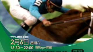 Video horse race 12232015 download MP3, 3GP, MP4, WEBM, AVI, FLV Agustus 2018