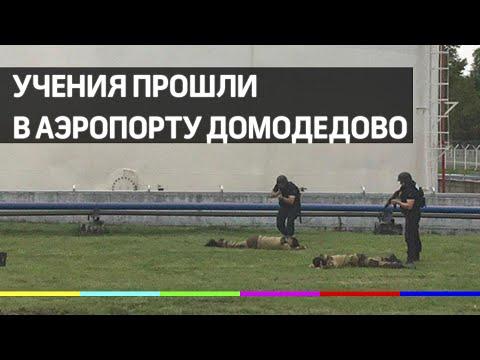 Предотвратить теракт и природную катастрофу. Учения прошли в аэропорту Домодедово