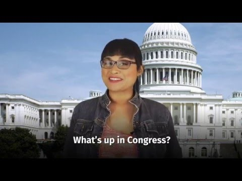 Congress Tackles the Zika Virus