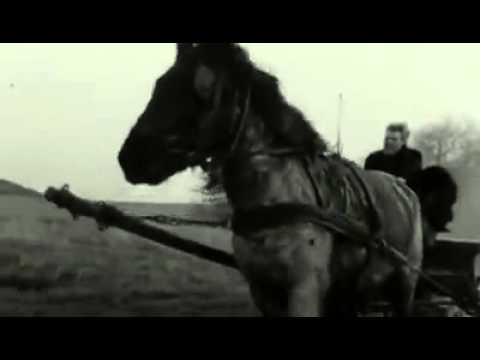 The Turin Horse -  Opening Scene