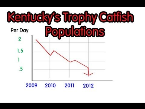 Trophy Catfish Population in Kentucky and Indiana's Natural water ways VOL.2