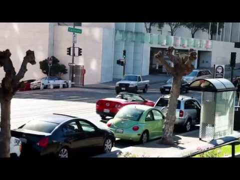 Science in Action: Earthquake Engineering | California Academy of Sciences