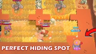 HIDING SPOT FOR BIG GAME! :: Funny moments, Fails & Wins