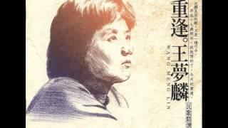 王夢麟 - 木棉道