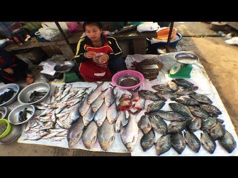 WoW!! Fish Market In Laos Street Food