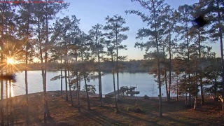 Lake Murray Osprey 2