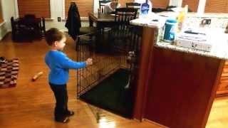 Tyler, Young Dog Handler