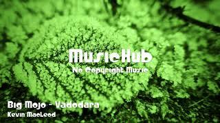 🎵 Big Mojo - Vadodara - Kevin MacLeod 🎧 No Copyright Music 🎶 Royalty Free Music
