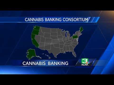 How Banks Will Handle California's Pot Money
