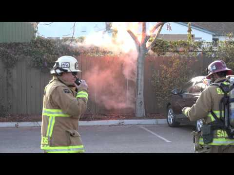 Screaming tree, exploding bush! And the Santa Barbara Fire dept. can do nothing to stop it!- in 4K