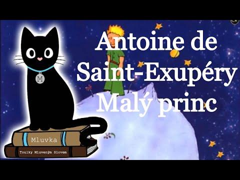 Antoine de Saint-Exupéry - Malý princ (Mluvené slovo SK)