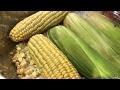 Crema de maíz 🌽 En vivo