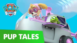 PAW Patrol | Pups Save a Flying Frog! | Rescue Episode | PAW Patrol Official & Friends