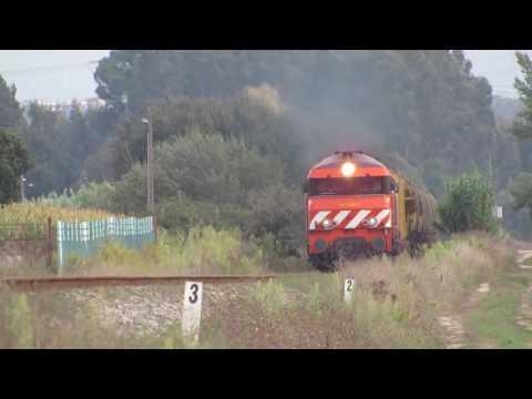 Comboio dos cereais em Regueira de Pontes