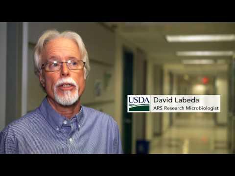 USDA-ARS SAFEGUARDS VALUABLE SCIENTIFIC RESOURCES