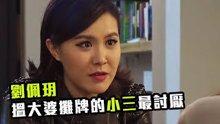 【女人何苦為難女人】劉佩玥 搵大婆攤牌 (幕後玩家)