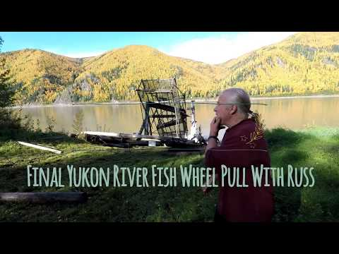 Final Yukon River Fish Wheel Pull With Russ (part 2) - Stan