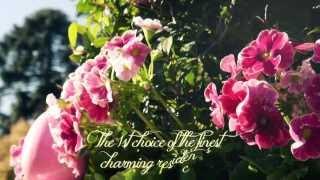 """Jardinier Du Roi,  Manufacture Versailles Planter Boxes """"caisse De Versailles"""", French Planters"""