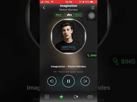Imagination - Shawn Mendes (lirik)