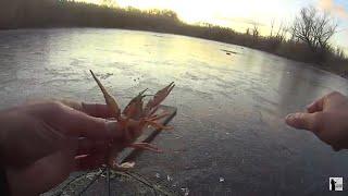 Первый лед Ловля раков зимой на раколовки Узнали где зимуют раки