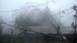Strong Winds of Super Typhoon Yolanda at Tacloban City