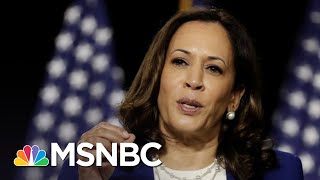 Neal Katyal: Trump Betrays His Oath Floating Kamala Harris Birtherism | The 11th Hour | MSNBC